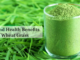 Facts and health benefits of Wheat Grass